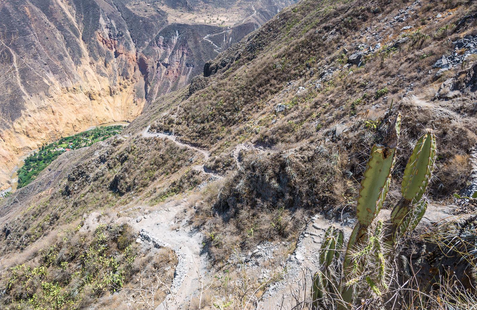 sangalle oasis cabanaconde colca canyon perou