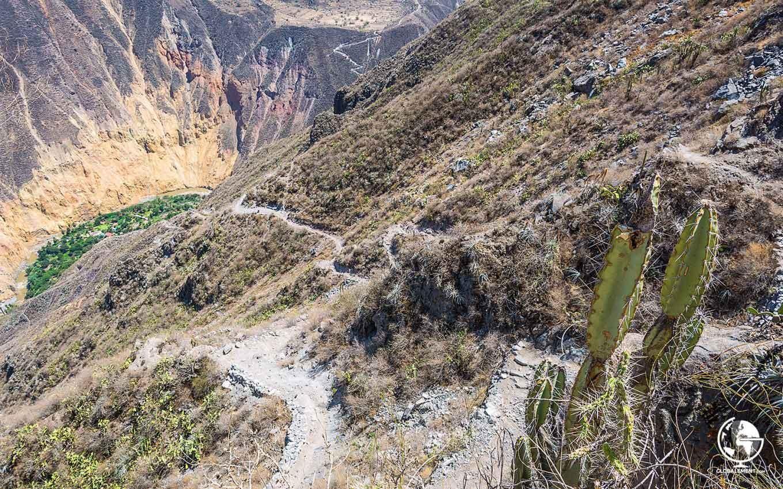 canyon-colca-sangalle-a